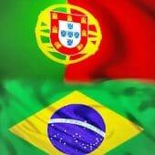 Artigo 13Os Turistas, o Brasil e o Mundial