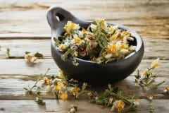carqueja - herbs and spices in portuguese cooking