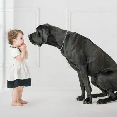 big-dog-kid
